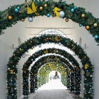 Рождество на территории Дивеевского монастыря :: Ольга Довженко