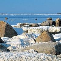 Ледоход на Белом море :: Сергей Курников
