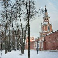 Москва. Донской монастырь :: Михаил Танин