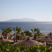 Море и остров :: ZNatasha -