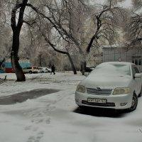 Хочу туда, где потеплее) - подумала машина :: Марина Белоусова