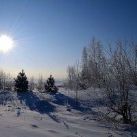 Морозный январский день :: Вера Андреева