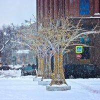 Снегопад на Новинском бульваре :: Денис Масленников