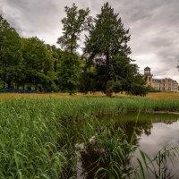 Парк и пруд :: Николай Гирш