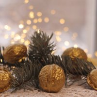 А орешки не простые, все скорлупки золотые... :: Irene Irene