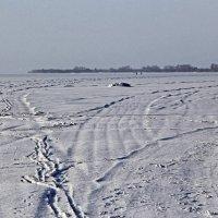 Следы на льду залива :: Александр Капустин