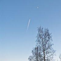 На луну :: Александр Капустин