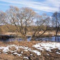 Весна в долине Исьмы :: Сергей Курников