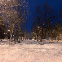 Зима :: Михаил Соколов