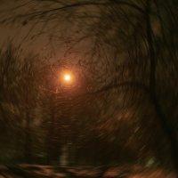 фонарь :: Яков Реймер