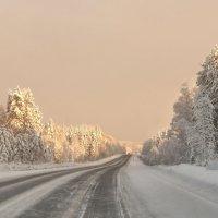 Зимняя дорога. :: vlad. alferow