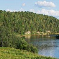 Лето на реке Ухта. :: Николай Зиновьев
