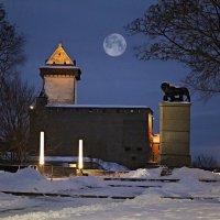 Шведский лев и Нарвский замок :: Marina Pavlova