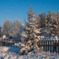 Зимний день :: Дмитрий Костоусов