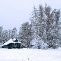 Зима в деревне :: Людмила Гулина