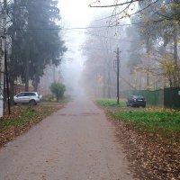 На нашей улице туман :: Маргарита