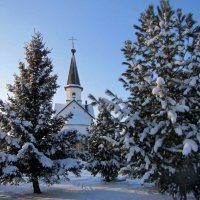 Зимний пейзаж :: dli1953