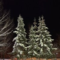 Морозный зимний вечер :: Алёна Алексаткина