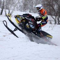 7 февраль, день зимнего спорта..(5) :: MoskalenkoYP .