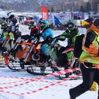 Snowbike...(5) :: MoskalenkoYP .