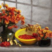 Осенний с красной рябиной. :: Лилия *