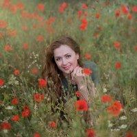Поглядите, там и тут, маки красные цветут! :: Nadezhda Laschinski