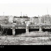Не утолить нам жажды городской... Прогулками по дну водохранилищ... :: Сергей Леонтьев