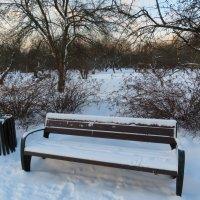 В нешем парке. :: Зинаида