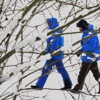 Синие Тени .... (для балетоманов :-)  ) :: ii_ik Иванов