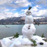 Портрет снеговика :: Валерий Дворников