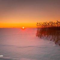 Zachód słońca Jezioro Łebsko :: Janusz Wrzesień