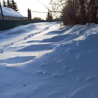 Снега :: Николай Филоненко
