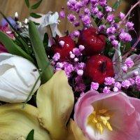 Цветы :: Елена Елена