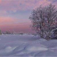 Розовый закат :: Владимир Чикота