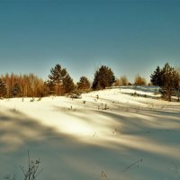 Солнечный морозный день февраля :: Ольга Митрофанова