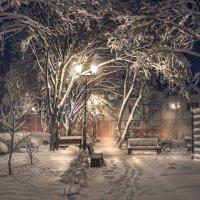 Зимний дворик :: Геннадий Клевцов