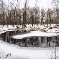 Как может выглядеть холод :: Григорий охотник
