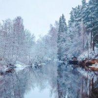 Один февральский день :: Александр Игнатьев