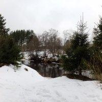 Река Оредеж в предверии весны. :: Жанна Викторовна