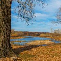 Агидель осенью :: Любовь Потеряхина