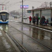 Москва. Последний день зимы :: Михаил Танин