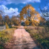 «Заметьте, осень - больше сезон души, нежели природы» (Фридрих Ницше) :: Глeб ПЛATOB
