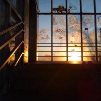 Восход солнца в наземном переходе. :: Павел Михалев