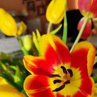 Символ 8 марта ) :: Светлана