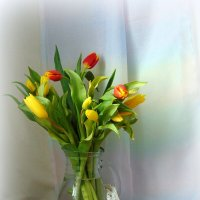 Пусть вам тюльпанов запах свежий Подарит радость, счастье, нежность. :: nadyasilyuk Вознюк