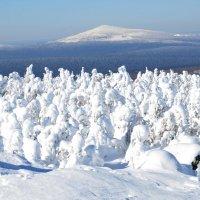 зима в горах 11 :: Константин Трапезников