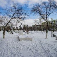 Сквер зимой :: Анатолий Чикчирный