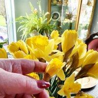 Цветы для Риты :: Борис
