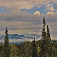 Утро августа в горах :: Сергей Чиняев