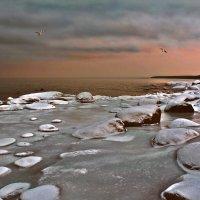 На Финском заливе :: Marina Pavlova